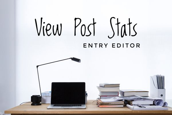 View Post Stats