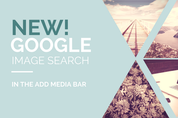 NEW! Google Image Search