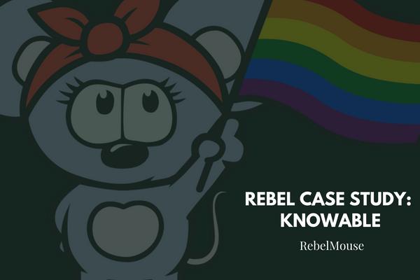 Rebel Case Study: Knowable