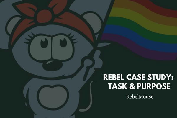 Rebel Case Study: Task & Purpose