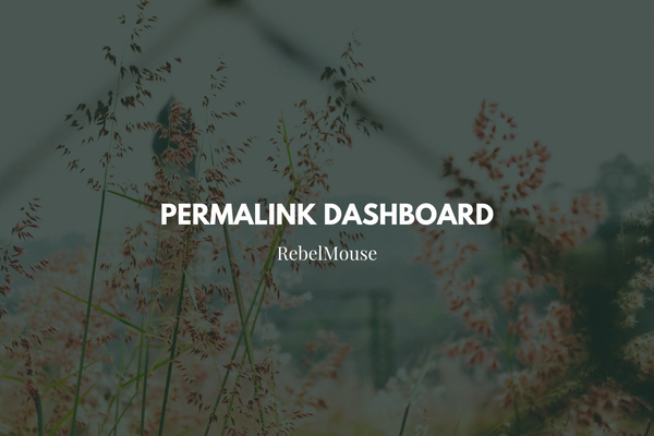 Choose Your URL Structure With Our Permalink Dashboard
