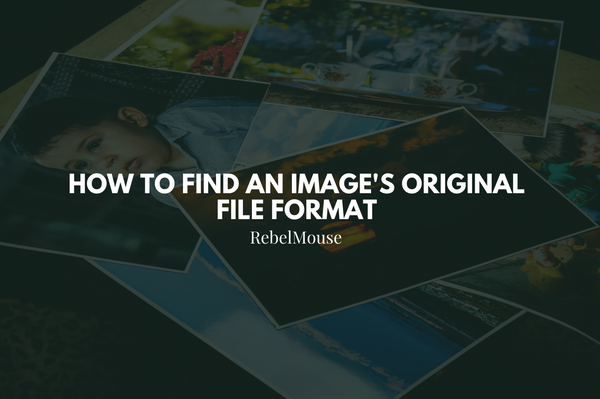 How to Find an Image's Original File Format