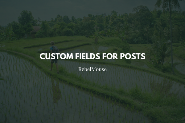 How to Add Custom Fields to Posts